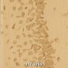 117-5215-150x150