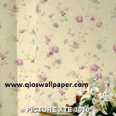 PICTURE-XTE-3010-150x150