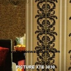 PICTURE-XTE-3030-150x150