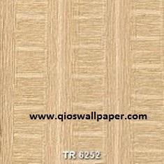 TR-6252-150x150