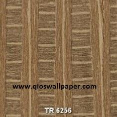 TR-6256-150x150