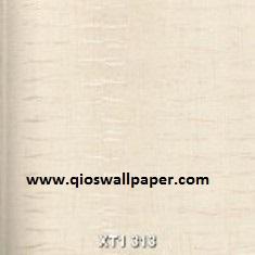 XT1-313-150x150