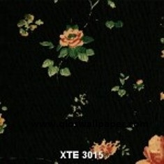 XTE-3015-150x150