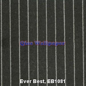 Ever-Best-EB1081