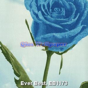 Ever-Best-EB1173