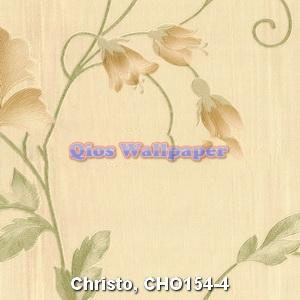 Christo-CHO154-4