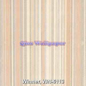 Winner-WN-6113