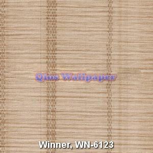 Winner-WN-6123