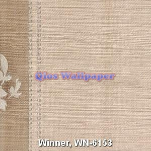 Winner-WN-6153