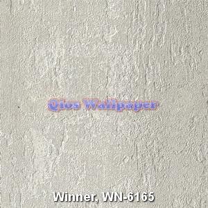 Winner-WN-6165