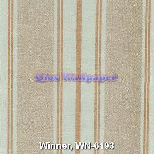 Winner-WN-6193