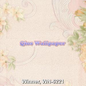 Winner-WN-6221