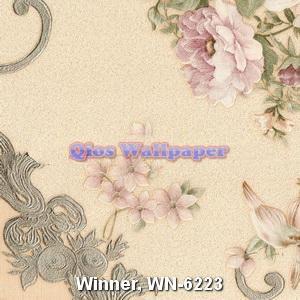 Winner-WN-6223