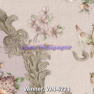 Winner-WN-6224