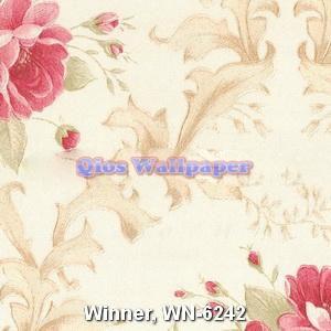 Winner-WN-6242