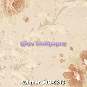 Winner-WN-6243