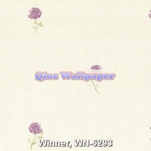 Winner-WN-6293