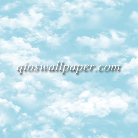 wallpaper dinding plafon premium